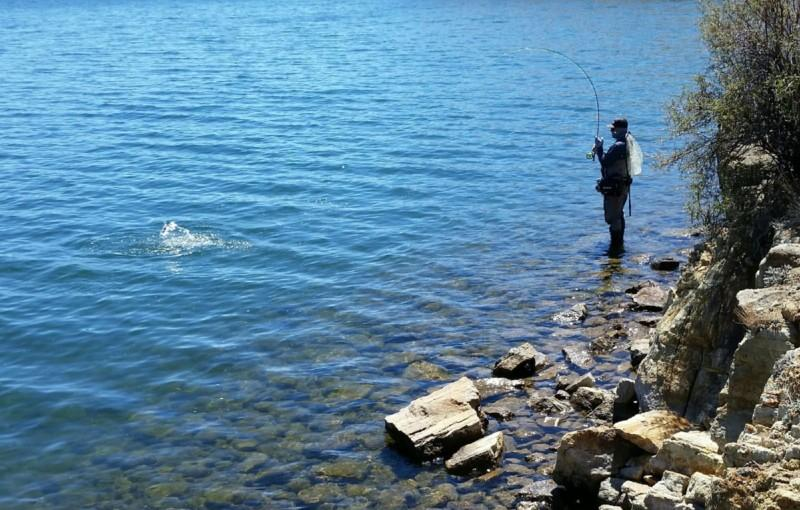 An angler completes his cast, standing at the edge of Elevenmile Reservoir