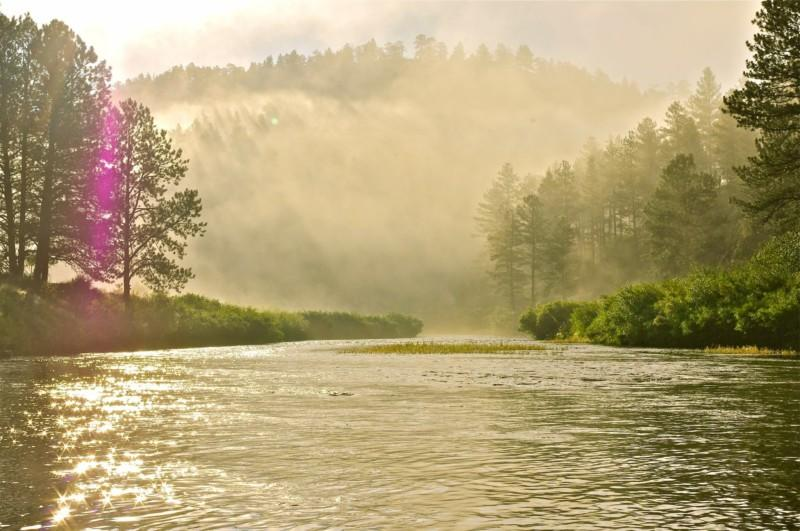 The South Platte River looks picturesque in the early morning sun